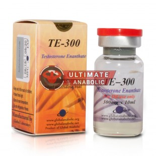 Global Anabolic Testosterone Enanthate 300mg